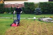 Восстановление газона после зимы,  вычесывание,  аэрация